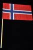 Norge Supporter flaggan